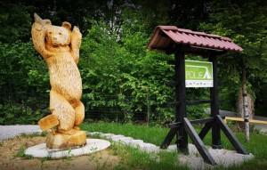 Kamp-Polje-medved