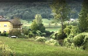 Kamp-Polje-narava